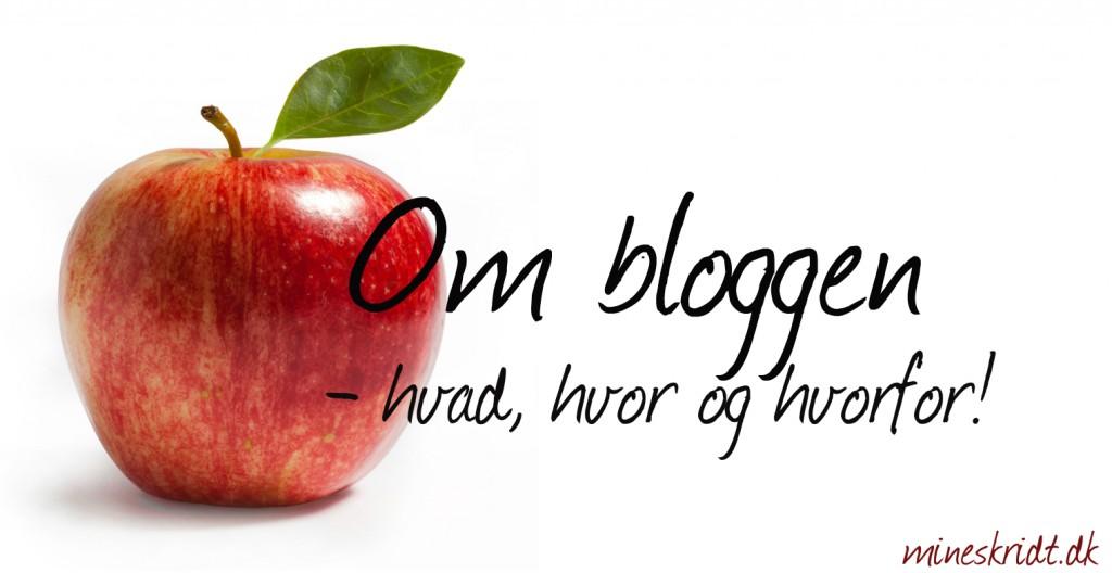 Om bloggen